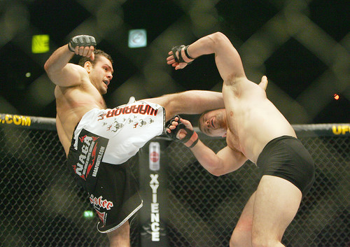 Cro Cop vs. Gonzaga 2 to headline UFC Poland