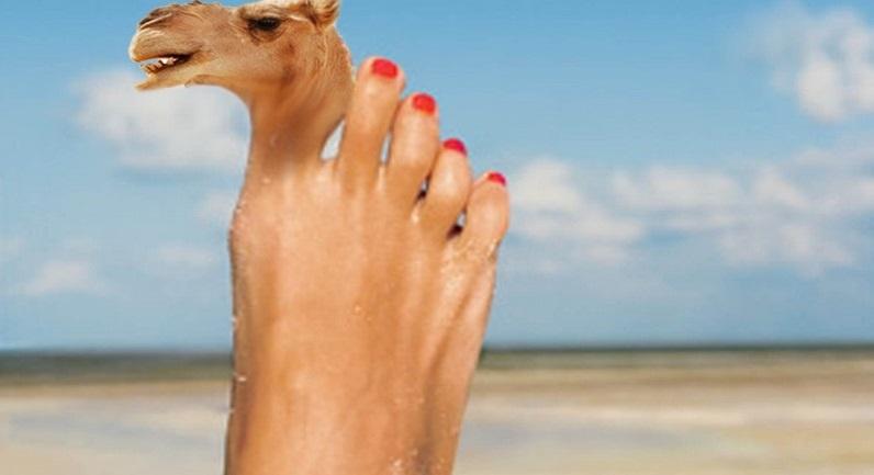 Ronda Rousey camel toe
