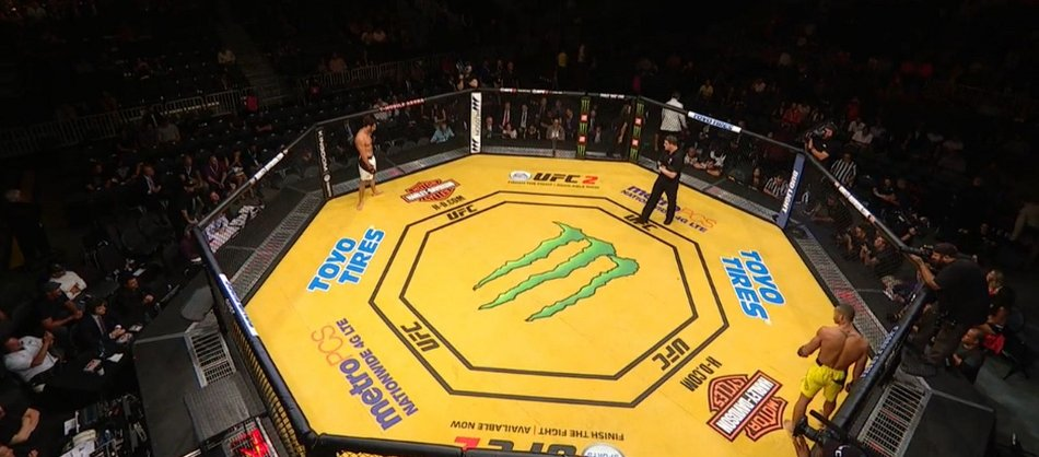 Mustard yellow UFC 200 octagon 'really irked my tater'
