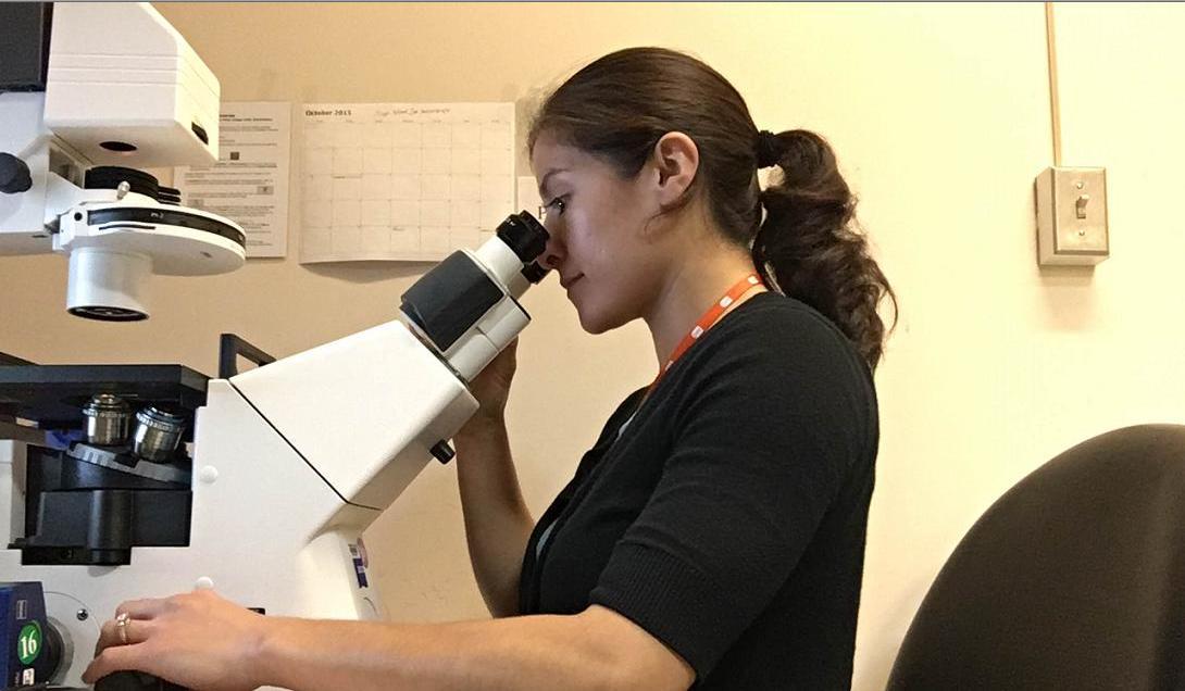 Dr. Erin Jimenez