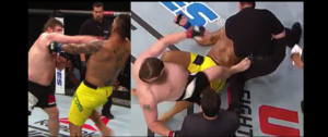Roy Nelson suspended