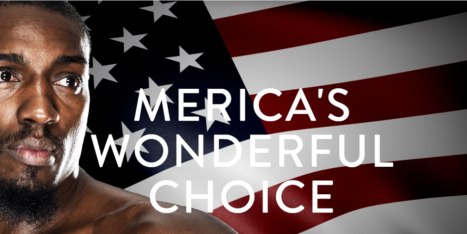 Vote for Phil Davis 2016 - America's Wonderful Choice
