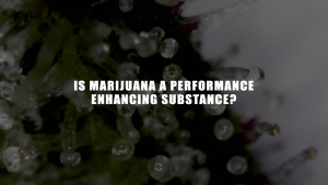 is marijuana a performance enhancing drug?