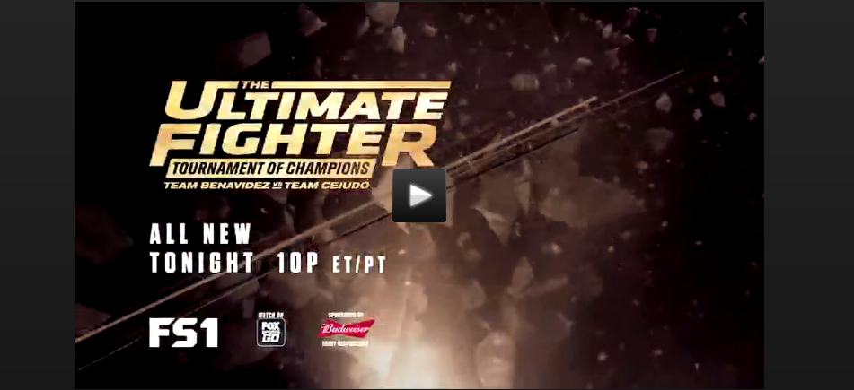 Final episode of Ultimate Fighter Season 24: Tournament of Champions
