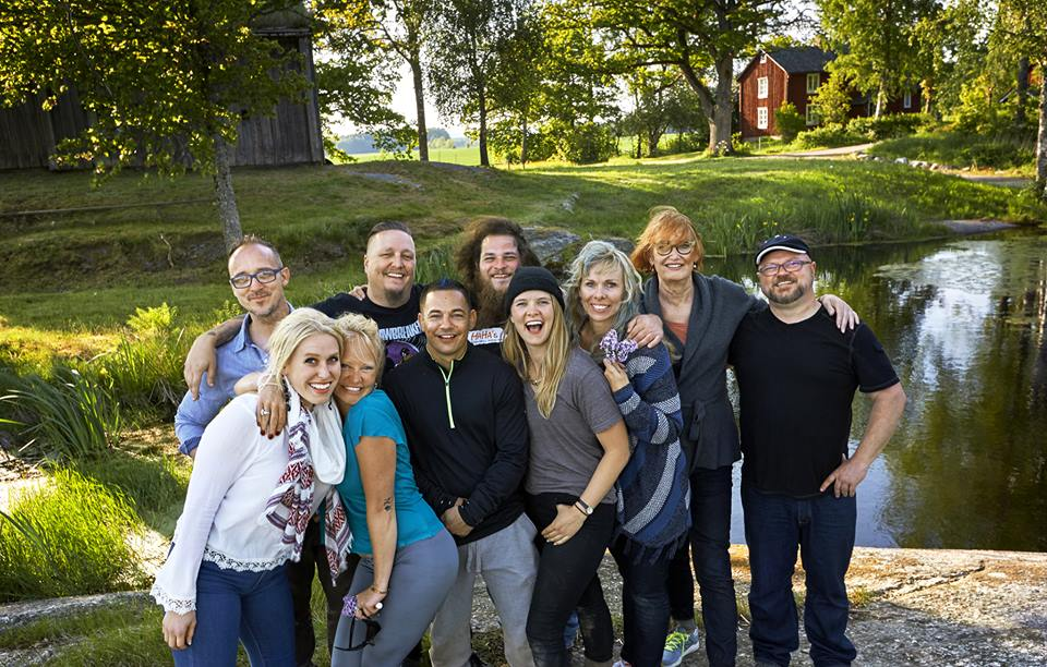 Steven Swanson, cast of Allt för Sverige