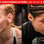 UFC on FOX 23 - Valentina Shevchenko vs. Julianna Pena