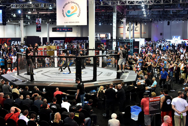 MMA Olympics