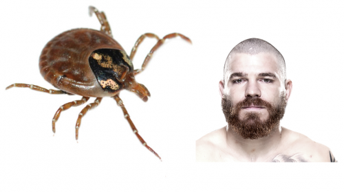 UFC fighter talks about battle with Lyme Disease – Warns of 2017 tick season