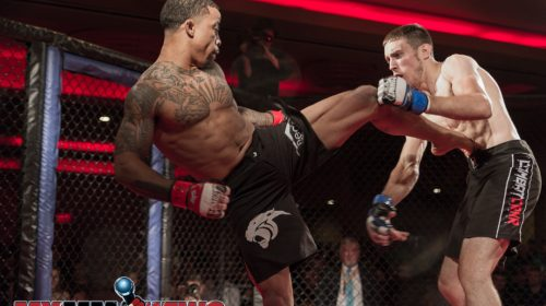 Brandon Davis vs. Ed Doud, Art of War Cagefighting 2