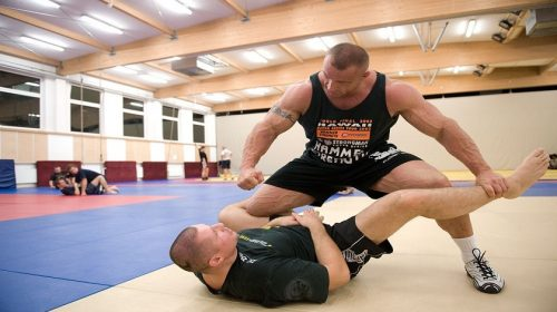 The best discipline for MMA fighters to train in is… MMA