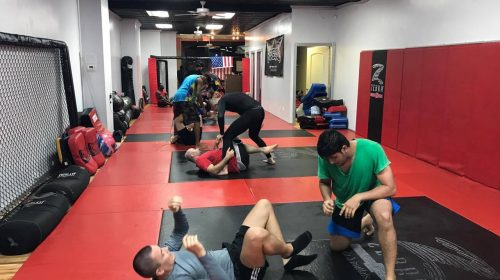 Terry Gold on ROC, ECF and new facility for Brooklyn MMA