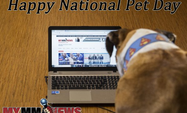 #NationalPetDay - Bust watches MyMMANews.com