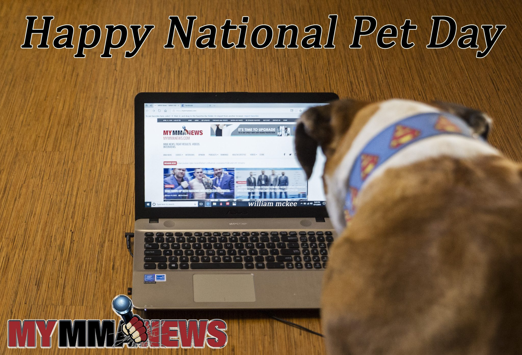 #NationalPetDay – Bust watches MyMMANews.com
