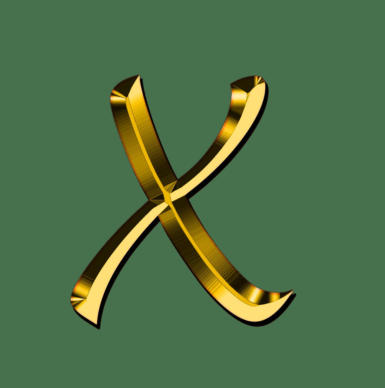 Letter X, Brazilian Jiu-Jitsu For Dummies