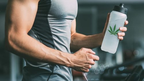 CBD: the science behind the compound helping MMA fighters