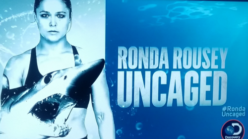 Shark Week attracts former UFC champion Ronda Rousey for 'Uncaged' dive