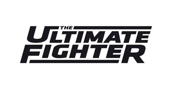 ultimate fighter heavy hitters