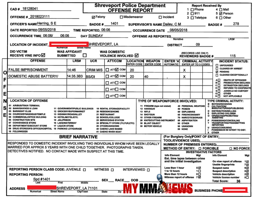 andrea lee police report