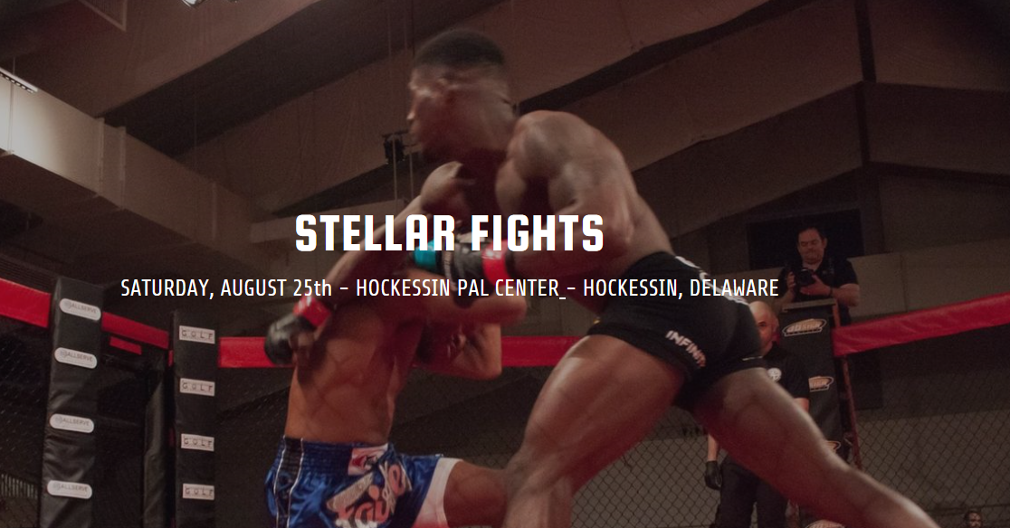 Stellar Fights 38 Results