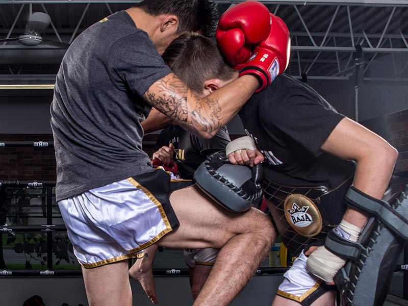 How Combat Sports Help You With Self-Discipline