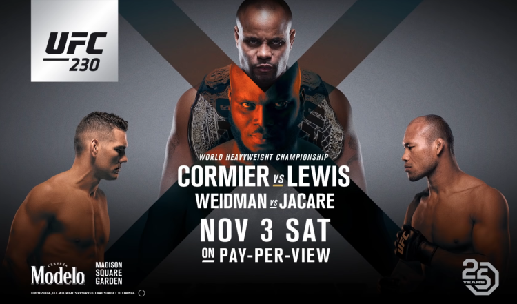 UFC 230 results