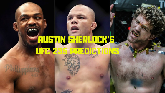 UFC 235 Predictions