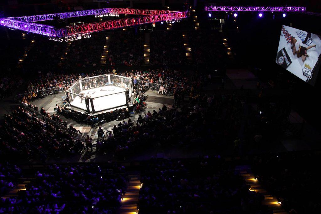 Shogun Fights XXI Results - Cole Presley vs. Tucker Lutz