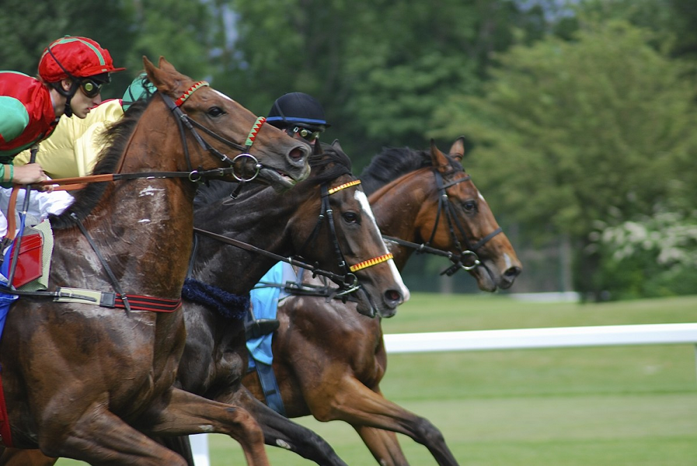 2019 Triple Crown Series Nominations: Game Winner Leads The Poll