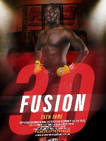 Fusion Fighting Championship 30