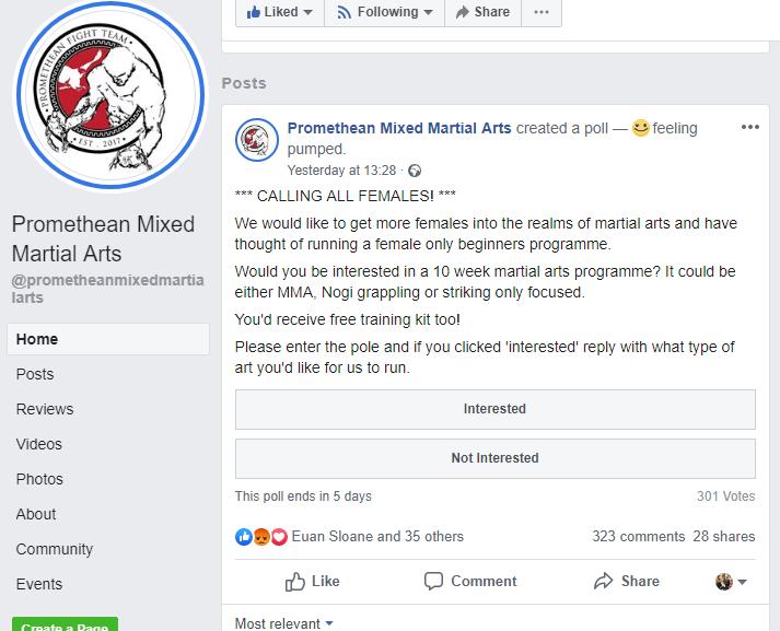 feminists, Promethean Mixed Martial Arts