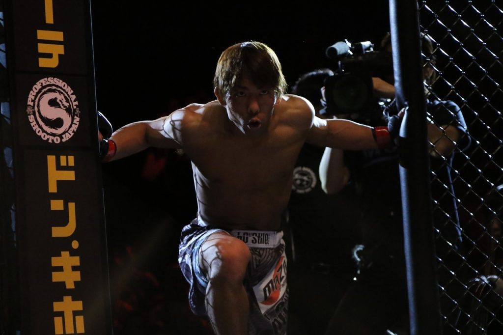 The supplements every MMA athlete should take
