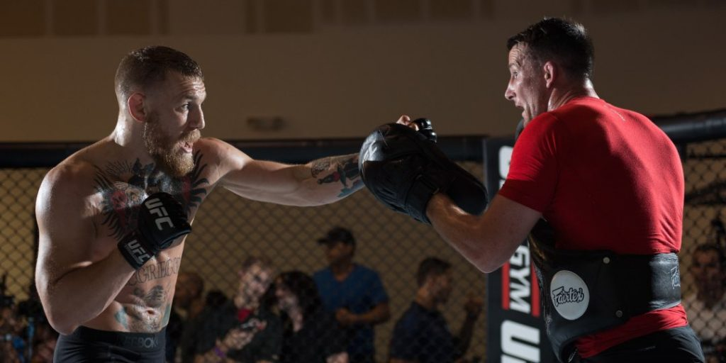 train like a professional mma fighter