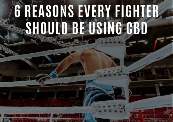6 Reasons Every Fighter Should Be Using CBD