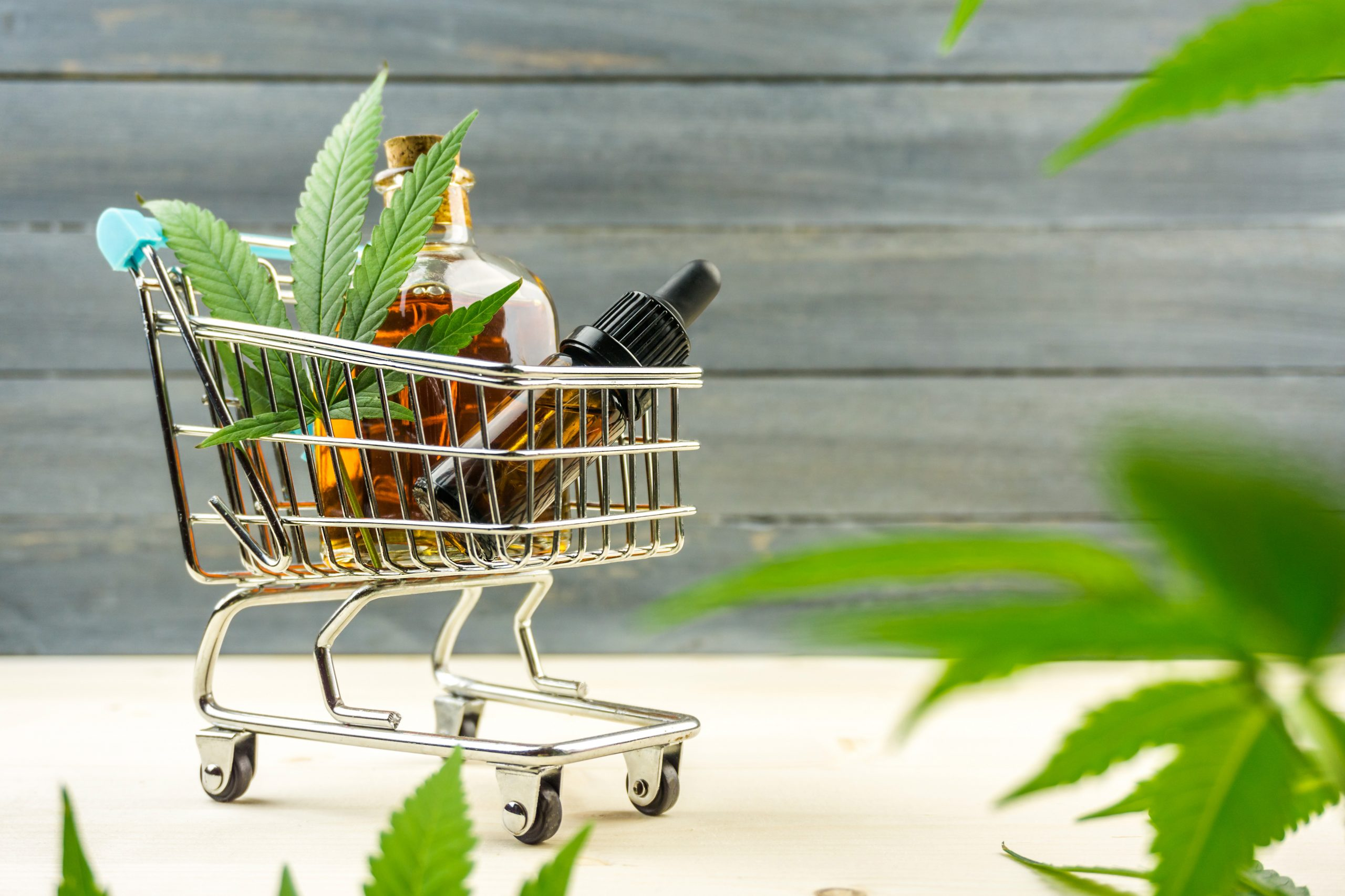 5 Reasons Why Natural Health Products Are Gaining Popularity