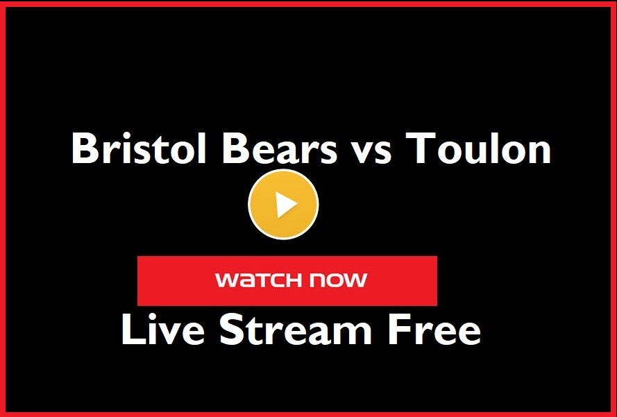 Bristol Bears vs Toulon Live Rugby Stream Free, 2020 European Challenge Cup Final Team Build-up & News, Analysis, Video