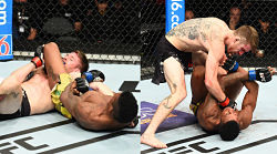 UFC Fight Island 5
