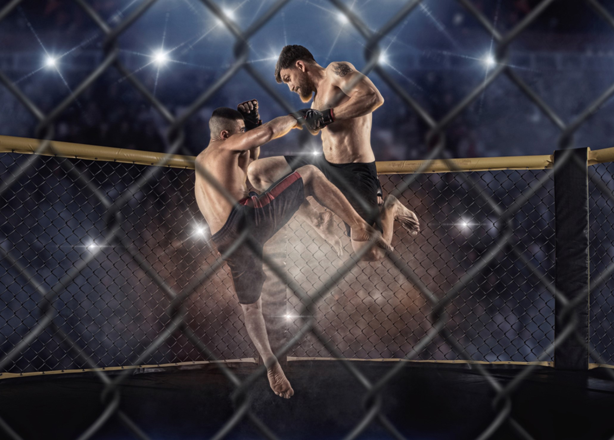 The Best MMA Fights of All Time
