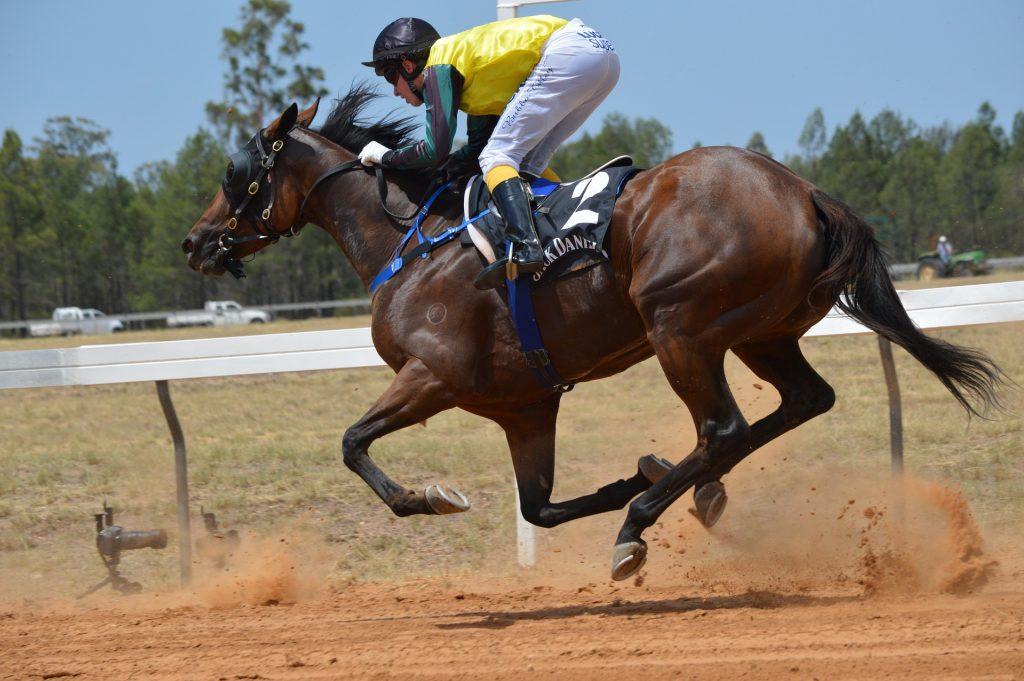 2021 Blue Diamond Stakes Race