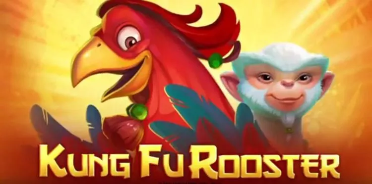 kung foo rooster